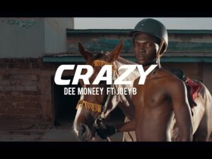 Dee Moneey - Crazy ft. Joey B