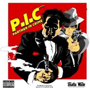 Shatta Wale - P.I.C (Prod by Beatz Vampire)